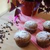 Schoko-Protein-Muffins