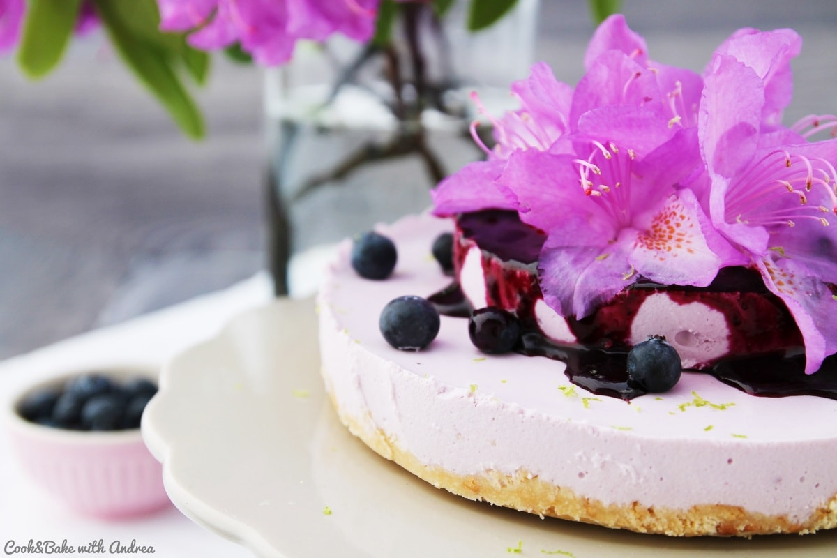 how to make blueberry cheesecake no bake