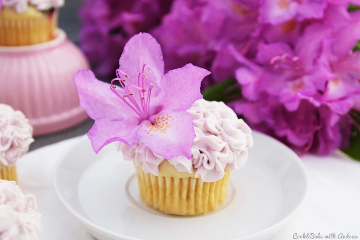 Blaubeer-Limette-Cupcakes - C&B with Andrea